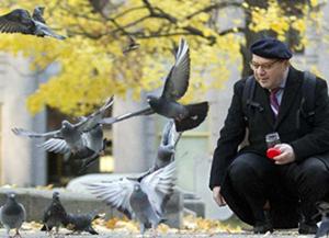 press-pigeons